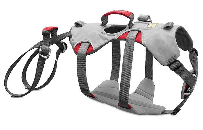 dog rappelling harness